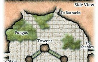 Ul-Drakkan Drow City Towers in the Dark Elf Caverns beneath Ptolus Dark Elf Fortress Lizard