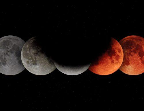 Dark-Moon Festival